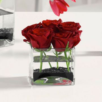Roses in Glass Cube
